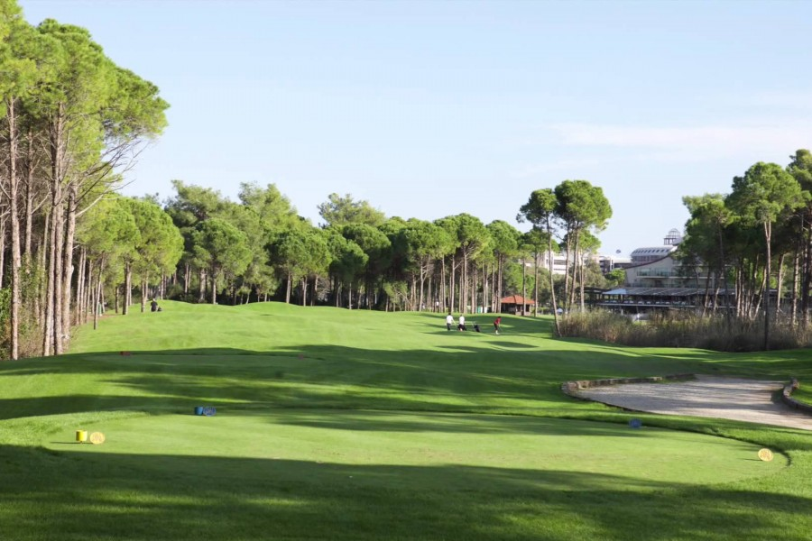 Sueno Golf Club Pines 193