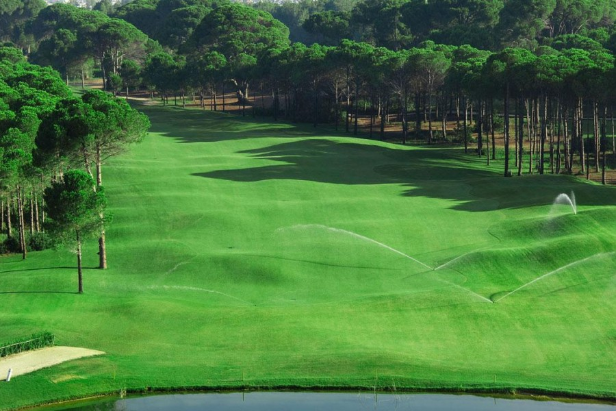 Sueno Golf Club Pines 195