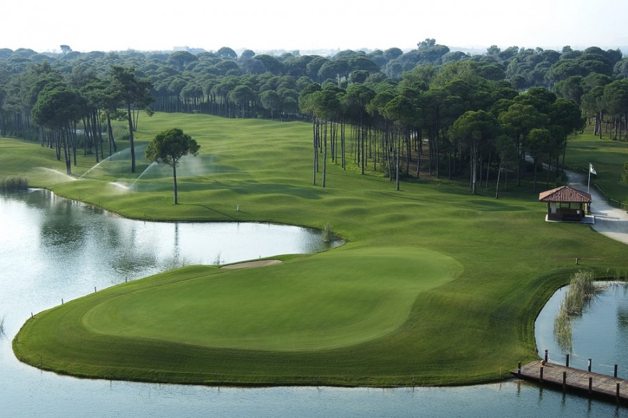 Sueno Golf Club Pines 3597